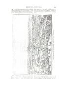 Stran 275