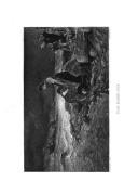 Stran 304