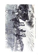 Stran 296