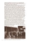 Stran 2
