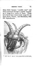 Stran 71