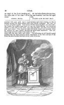 Stran 10