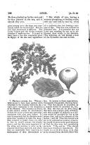 Stran 126