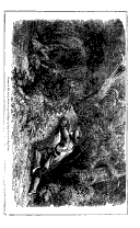 Stran 491