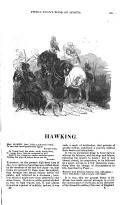 Stran 305