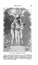 Stran 193