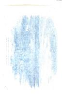 Stran 299