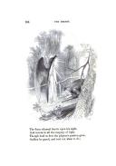 Stran 164