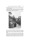 Stran 29