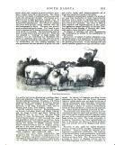 Stran 1451