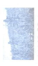 Stran 186