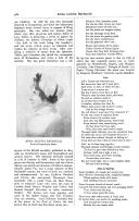 Stran 582